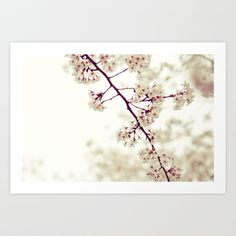 Music of Spring Art Print by Shilpa - $18.00