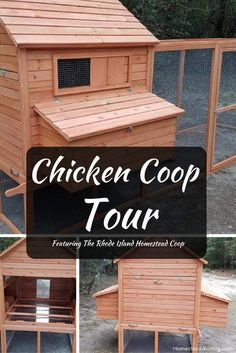 Chicken-coop-tour. Tour of the Rhode Island Homestead Chicken Coop, from the #ad The Chicken Coop Company. Homesteading, chickens, chicken lady. | Homestead Wishing, Author, Kristi Wheeler |  http://homesteadwishing.com/chicken-coop-tour/ |