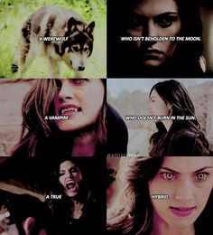 ❦ [hayley marshall] the quote is from klaus in 3x02 I'm pretty sure + the werewolf cap is so blurry and ugly but it's the only time Hayley was ever shown in full wolf form  — qotd; werewolf hayley or hybrid hayley? aotd; hybrid  #theoriginals #hayleymarshall #phoebetonkin