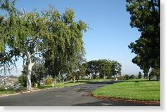 $8K - 17-0720-1 - Companion Grave Space - Eternal Hills MP - Oceanside, CA - The Cemetery Exchange