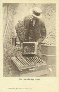 Vintage photo of beekeeper