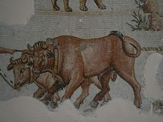 bardo museum, detail