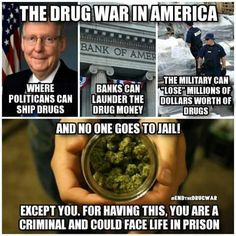 War on drugs = big bag of donkey bollocks