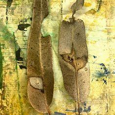 Leaf meets art ... . . . . . #leafart #abstractart #mixedmedia #contemporaryabstract #abstractexpressionism #abstract #abstractphotography Abstract Expressionism, Abstract Art, Dutch Artists, Leaf Art, Abstract Photography, Van, Contemporary, Vans