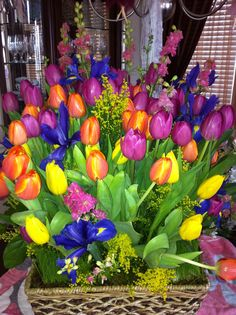 Spring Tulips from Fergie's Flowers
