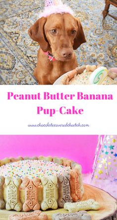 Rock your dogs world with this homemade Peanut Butter Banana Pup Cake! Healthy peanut butter banana whole wheat cake with creamy peanut butter frosting. Dog Cake Recipes, Dog Biscuit Recipes, Dog Treat Recipes, Dog Food Recipes, Dinner Recipes, Cake Dog, Puppy Cake, Dog Cakes, Cake Baby