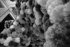 #Francesca Pasquali #Spiderball Cloud #Biennale Giovani Monza 2015 - work in progress #site-specific - Musei Civici Monza -  #photo: ludovico maria gilberti