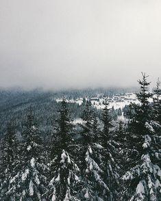 Běžky asi nebudou mým nejoblíbenějším zimním sportem ale ty výhledy metry sněhu čerstvý vzduch a mlhy v dáli za to stojí  Další ze tří letošních kurzů a zase jsem nadšená Zimní Mísečky jsou stejně tak krásný jako ty podzimní a já se sem budu vždycky ráda vracet vzpomínat a dokola obdivovat rozmanitost a proměnlivost přírody.  Ps: Taky myslim na Mayinku jak by  se jí tu líbilo a zapadala by v metrech sněhu letos na ty hory prostě ještě musíme moje hafano Dali, Snow, Outdoor, Instagram, Outdoors, Outdoor Games, The Great Outdoors, Eyes, Let It Snow