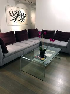 Morlen Sinoway Interior Design. Chicago residential project featuring a Ligne Roset Feng Sectional and Fiam coffee table.