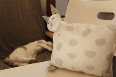 cat pillow / cojin gato