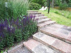 Foga plattorna och plantera växter tätt, är två sätt att minimera underhållet i en trädgård.