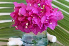 Photo-Fleur-feuille de palmier et fleurs de bougainvillier-sonia chatelain