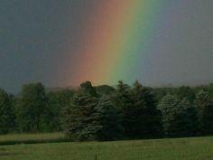 Jenny's rainbow