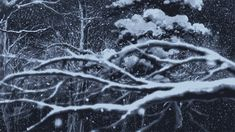 Paysages sous la neige ...