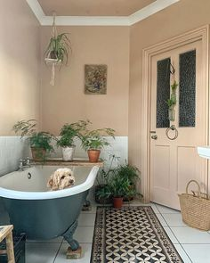 Such a clever idea to put plants on the wooden planks across the bath. Ive never seen a dog sit so patiently in a Budget Home Decorating, Interior Decorating, Interior Design, Home Improvement Loans, Dream Apartment, Shabby, Elegant Homes, Online Home Decor Stores, Cozy House