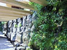Fallingwater in Pennsylvania, I love Frank Lloyd Wright!