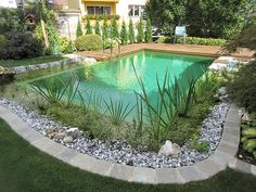 Landscaping Tools, Landscaping Company, Backyard Landscaping, Swimming Pool Designs, Swimming Pools, Natural Swimming Ponds, Glam House, Garden Solutions, Garden Oasis