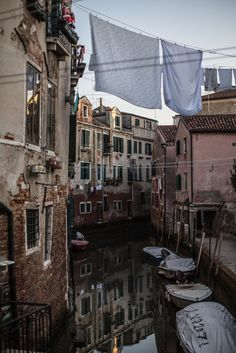 Venice / photo by Local Milk