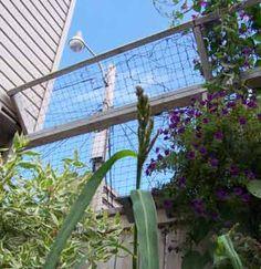 Fence keeps cats in, cat garden ideas