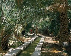 falaj   irrigation, which is provided by an ancient system of water channels known as aflāj (singular: falaj)