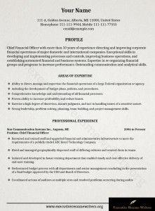 Ceo  Cfo Executive Resume Example  Resume Examples Executive