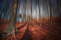 Light & Shadows by carstenmeyerdierks. Please Like http://fb.me/go4photos and Follow @go4fotos Thank You. :-)