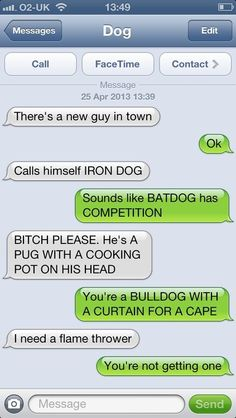Super Dogs - Funny pictures and memes of dogs doing and implying things. If you thought you couldn't possible love dogs anymore, this might prove you wrong. Funny Dog Texts, Funny Texts Jokes, Text Jokes, Funny Text Fails, Cute Texts, Funny Text Messages, Funny Quotes, Funny Memes, 9gag Funny
