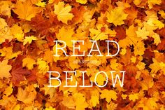 New fall read below by meee yayyy! Any requests?