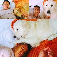 alexis sanchez Arsenal Fc, Alexis Sanchez, Ex Machina, Soccer Players, Corgi, Football, Photo And Video, Animals, Instagram