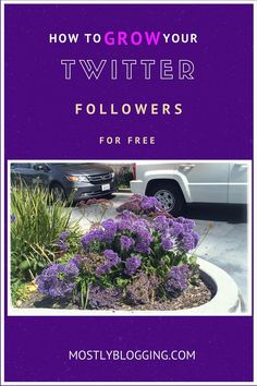 How to Quickly and Easily Get Hundreds of Twitter Followers Part II