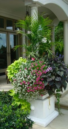 Grand scale container gardening