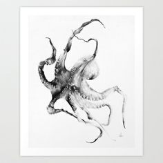 Octopus Art Print by Alexis Marcou - $16.00 - black and white wall