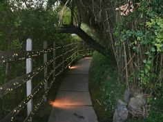 Lighted Path, Agoura Hills, California
