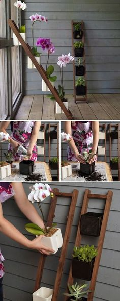 Cute ladder planter I love this idea because my boyfriend likes getting me orchids