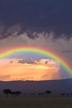 Stormy sky and rainbow in Masai Mara, Kenya