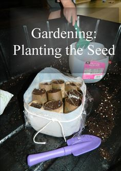 Gardening: Planting The Seed {Montessori on a Budget blog}
