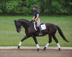 Focus on rider balance and coordination of aids.