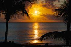 Reflections: Sunrise at Pompano Beach, FL
