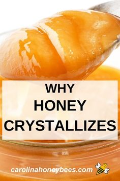 Why honey crystallizes or turns to sugar and what to do. #carolinahoneybees #crystallizedhoney #rawhoney Eating Raw, Healthy Eating, Healthy Food, Why Does Honey Crystallize, Honey Recipes, Healthy Recipes, Raw Honey, Honey Bees