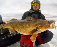 "February and March offer walleye anglers across the ice belt their best opportunity to catch the biggest fish of the winter. They commonly refer to it as the ""late ice,"" or ""last ice,"" period, but ""prespawn"" is a more accurate term to describe the fish's current place in the biological cycle. Whatever you call it, …"