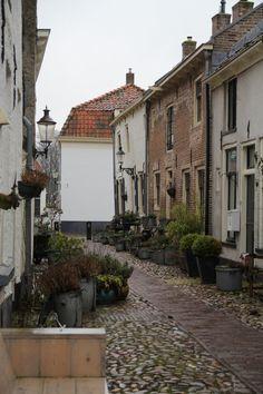 Franse Lelie: Elburg,  The Netherlands