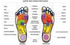 reflexology diagram via Matin Lumineux Plexus Solaire, Martial Arts Workout, Good Massage, Anti Stress, Dental Health, Massage Therapy, Health And Nutrition, Ayurveda, Voici
