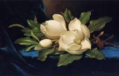 Giant Magnolias on a Blue Velvet Cloth MARTIN JOHNSON HEADE