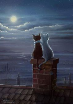 Enjoying the evening, black and white cat painting, enjoying the moon on the roof top. that would be my cats! Esta imágen me recordó a Luna y Artemis de Sailor Moon. Jeremiah Morelli — Just Two Cats on a Roof, 2014 Just two cats on a roof Something qu Animals And Pets, Cute Animals, Anime Animals, Image Chat, Photo Chat, Cat Drawing, Moon Art, Crazy Cats, Cat Art