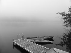 Fog in the eastern Townships, Québec