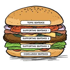 """The """"paragraph hamburger"""" is a writing organizer that visually outlines the key components of a paragraph. Topic sentence, detail sentences, and a closing sentence are the main elements of a good paragraph, and each one forms a different """"piece"""" of the hamburger."""