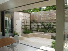 Kletterpflanzen verschönern eine kahle Gartenmauer
