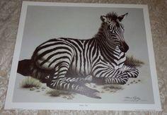 1985 Harold Rigsby 14 X 18 Panda Ii Print Signed Vintage