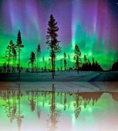 Northern lights...Alaska
