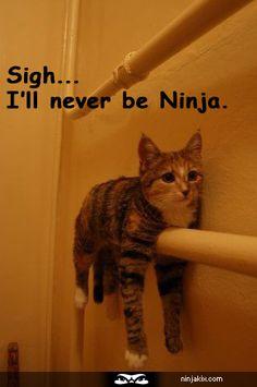 Sigh... I'll never be Ninja.